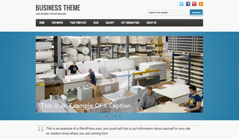 picture of premium wordpress theme Business