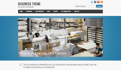 picture of premium wordpress theme Business