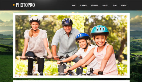 picture of premium wordpress theme PhotoPro