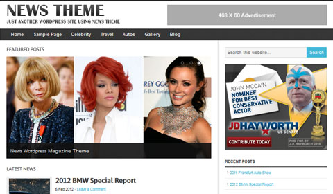 picture of premium wordpress theme News Theme