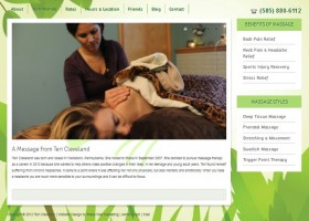 Teri Cleveland Massage Therapy
