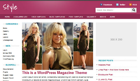 picture of premium wordpress theme Style
