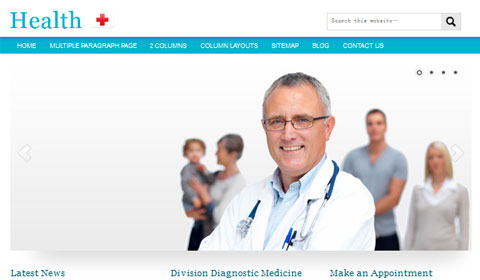 picture of premium wordpress theme Health